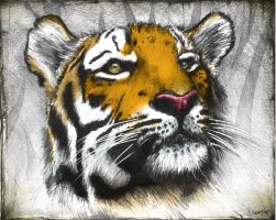 Portrait of the Jungle King by skam4