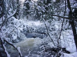 River in Winter by thundery-rain