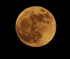 Yellow Moon by wagn18