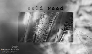 Cold Weed by pixbird