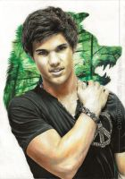 Taylor Lautner - Spirit Wolf by hedspace77