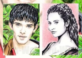 Merlin mini-portraits by whu-wei