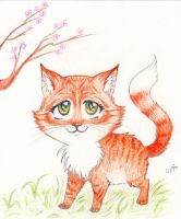 Spring.. Kitten by Bastet-mrr