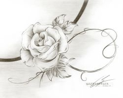 Graphite Rose 24aug10 by Sultzaberger