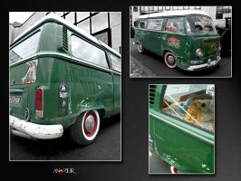 GREEN COMBI by ANOZER