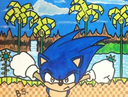 Sonic the Hedgehog Green Hill Zone Act 1 painted by sampson1721