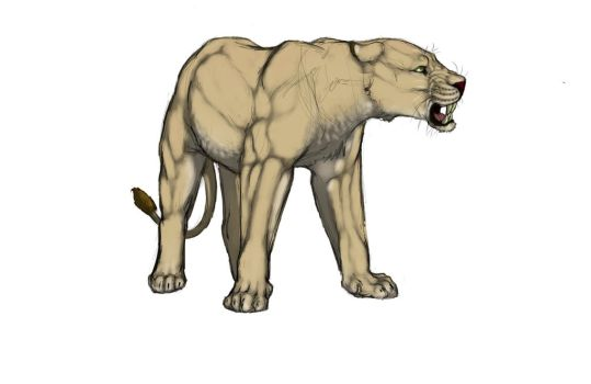Random angry lioness by Grisluka