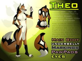 Theo Reference Sheet 2013 by WildTheory