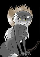 Under the full moon by Koku-chan