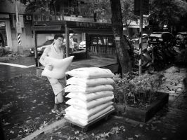 Flour Delivery by bQw