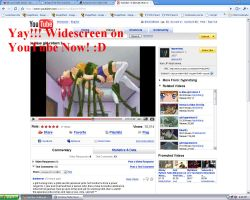 Widescreen YouTubez For All by BlooDaBeast