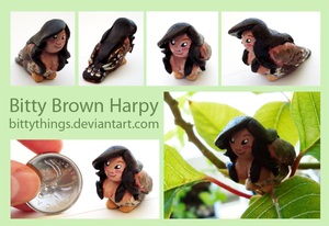 Little Brown Harpy