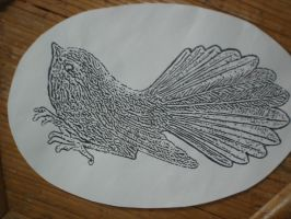 Fantail 4 by PhilippaAnne