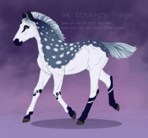 9699 Moonlight Trasse foal by Moon-illusion