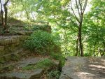 Rocky Forest Background 30 by FantasyStock