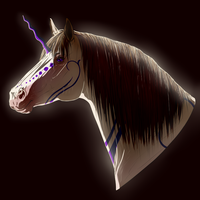 Horses Are Hairy by Schn3e