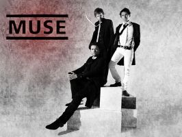 Muse WP by reignoffire86