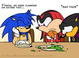 VERY Late Thanksgiving Pic by SonicMaster23