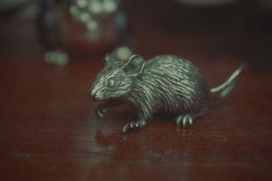 Mr Silver Mouse by DaphneWolfsong