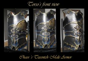 Commission : Chaos Tzeench Armor -torso front view by Deakath