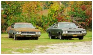 Two Buick's Waiting To Be Restored by TheMan268
