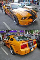 Shelby GT by gupa507