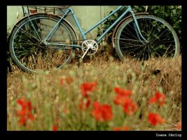 bycicle by ioanacarlig