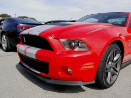 2010 Shelby GT500 n Camaro RS by Partywave
