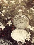 Pocket watch by Mina-Red