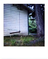 polaroid - swing:swung by mr-amateur