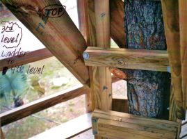 Our Treehouse Built by My Husband {Photo 42} by Empress-XZarrethTKon