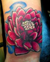 waterlilly cover-up by inkart13