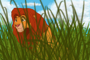 Watching Simba by Zoketi