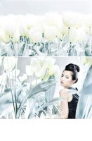 White Tulip 03 by protogeny