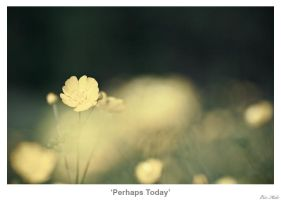Perhaps Today by MrColon
