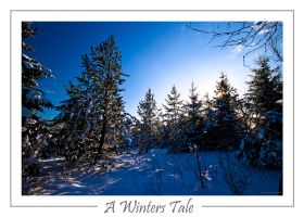 A winters tale by mad1dave