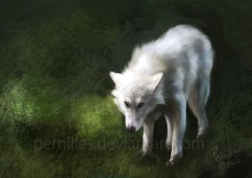 Forest Spirit by Pernilles