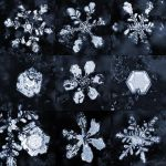 Day 356 - Snowflakes by FramedByNature