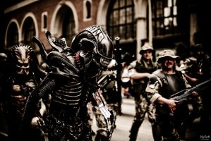 Dragon-Con 2009 by juhitsome