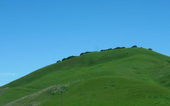 Oversaturated Green Hill by Leitmotif