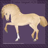 Winter Import 620 by ThatDenver