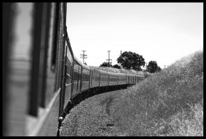Disapearing Train by Goanna-Equine