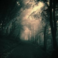 Where The Light Resides by Weissglut
