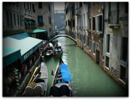 you'll never forget Venice smell by ninimo21