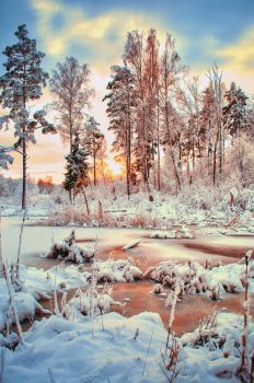 Snowy Sunset by agris58
