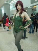 AX2014 - D4: 379 by ARp-Photography