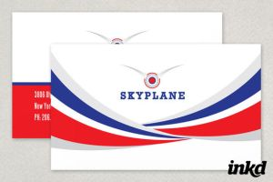 Private Pilot Business Card by inkddesign