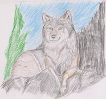 Wolf - Art trade for Russettip by ArcticIceWolf