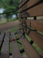 Chair by HempHat