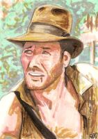 Indiana Jones PSC by tdastick